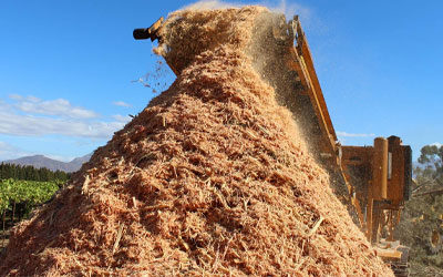 The Importance of Wood Chips and Biofuel